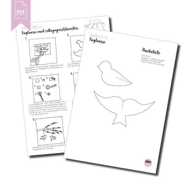 Guide og skabelon til fugleuro